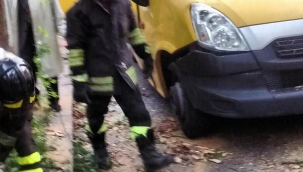 Cade albero su scuolabus, 3 feriti