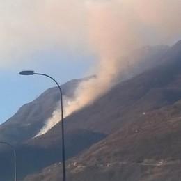 Quindici ettari di bosco in fumo «Troveremo il responsabile»