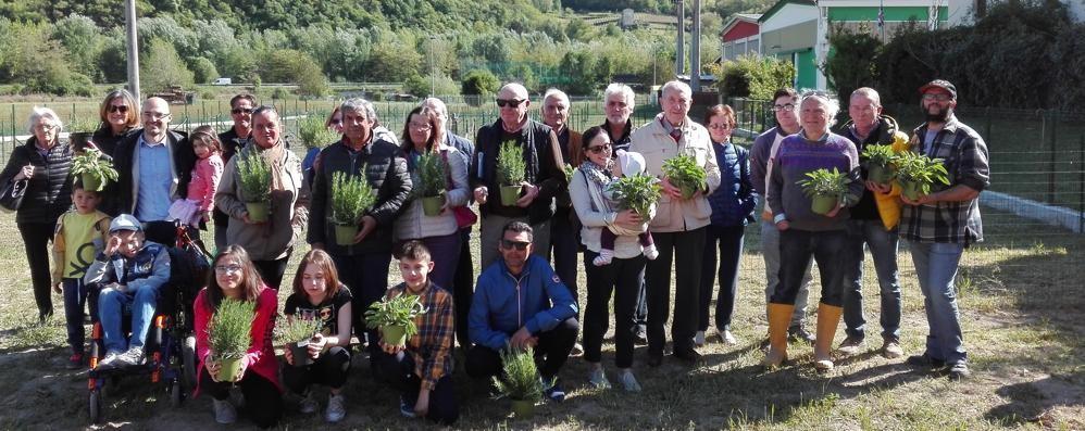 Orti sociali a Sondrio  Per anziani e famiglie