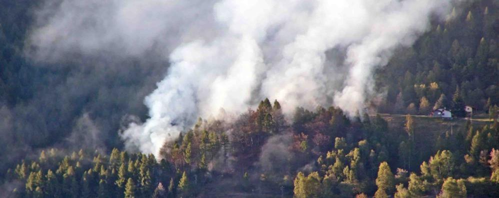 Sono 15 i roghi da inizio anno  Andati in fumo quasi 200 ettari