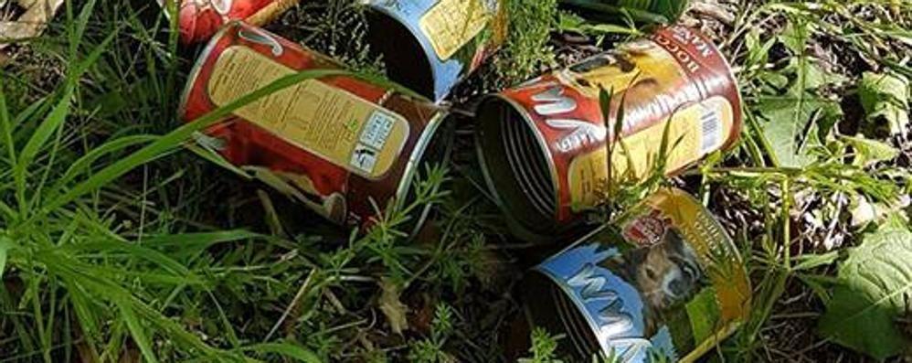 Grosotto, lattine abbandonate vicino alla ciclabile: «Un gesto incivile»