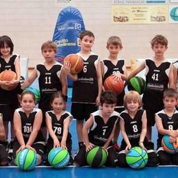 Basket, festa con i piccoli atleti per la Sondrio sportiva