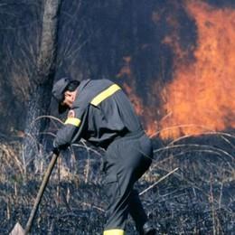 Grosso incendio, in fiamme diecimila metri quadrati di bosco
