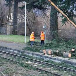 Piante pericolose in stazione a Berbenno Le Ferrovie intervengono