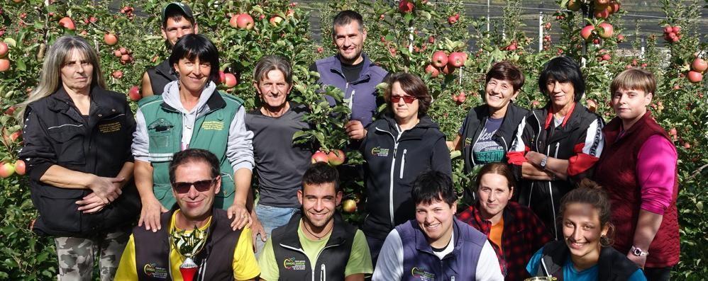 Dalla Valle all'Egitto: «Export sbocco per le nostre mele»