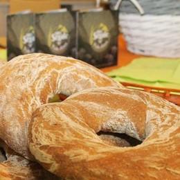 Mostra del Bitto con il pane di segale  made in Valtellina