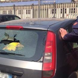 Vandalismi in centro, città sotto choc Trussoni: «Posizioneremo nuovi occhi»