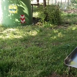Rifiuti a Triasso: ripulito il parco giochi dei bambini