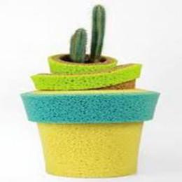 Ecco il vaso che bagna da solo le piante