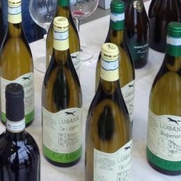 Valtellina al Salone del Gusto: protagonisti i vini