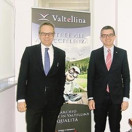 Marchio Valtellina, altre richieste  E il Trentino guarda al modello