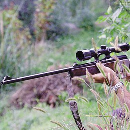 Arma con silenziatore, nei guai  bracconiere di   Villa di Tirano