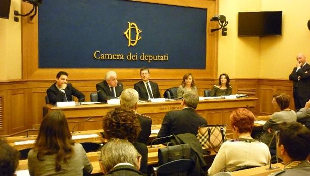 Gruppo Fi vedrà Cav, sospendere riforme