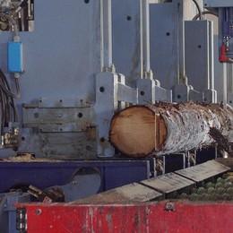 Il super franco affossa la filiera bosco-legno: cassa integrazione per 84