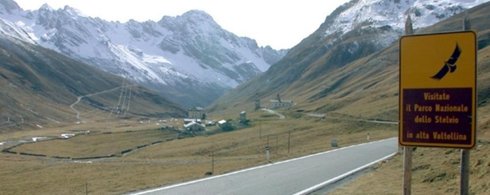 Parco dello Stelvio, salvi i dipendenti: «Ora gestione al via»