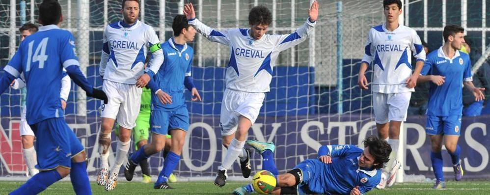 Calcio, il Sondrio si ricarica in vista della ripresa del campionato