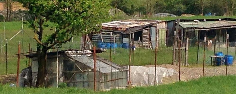Orti comunali a Sondrio, altri 40 in via Vanoni