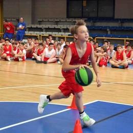 Sondrio, a giugno parte il Basket Camp: un mese di sport al Palascienghi