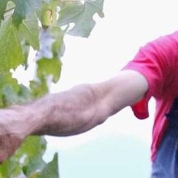 «Vino che vale   e viticoltori sfruttati»