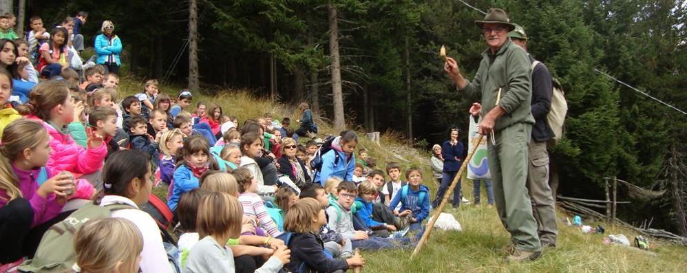 Tutti attenti se la lezione si tiene nel bosco