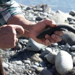 Al via la stagione della pesca: ecco la carica dei 4199