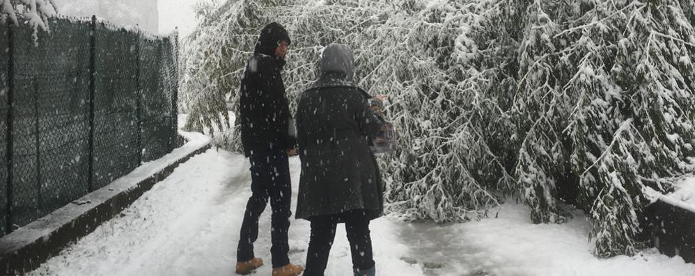 Troppa neve e disagi per gli automobilisti: alcuni passi sono stati chiusi