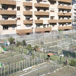 Gli orti urbani fanno il boom: lotti tutti esauriti