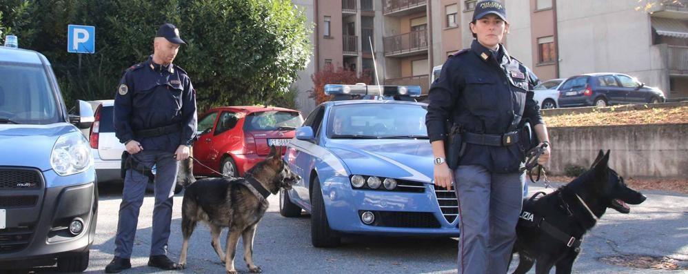 Sondrio, altri sei arrestati per spaccio di droga