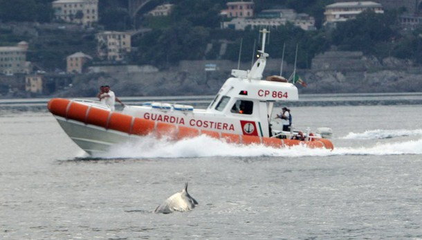 Migranti: 249 soccorsi al largo Sicilia