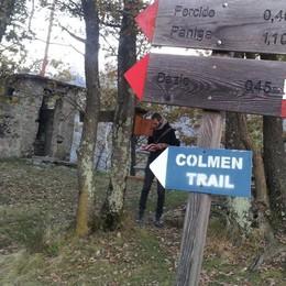 Cacciatori concordi: «Sui cervi alla Colmen ha ragione la Provincia»