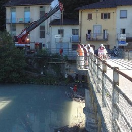 Pianta bloccata tra i pilastri  Vigili all'opera sotto il ponte