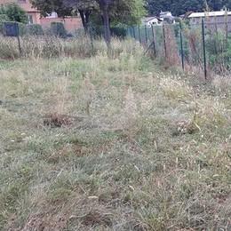 Morbegno, aree verdi tra sterpaglie e degrado diffuso