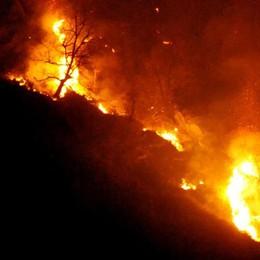 Un maxi rogo sopra Chiavenna: distrutti ettari di bosco