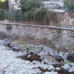 Pulizia del verde nei corsi d'acqua  Un argine contro il pericolo piene