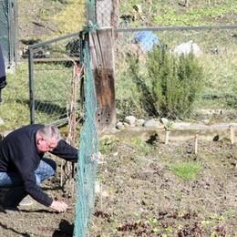 Orti in via Meriggio a Sondrio, nuove possibilità per famiglie e anziani