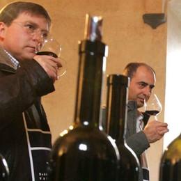 Valtellina Wine Festival verso il debutto  Due giorni tra bellezza, gusto e natura