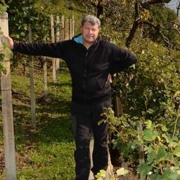 Traona, Piccapietra premiato al concorso di vini