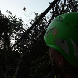 Si perde nei boschi  In dodici per salvarlo