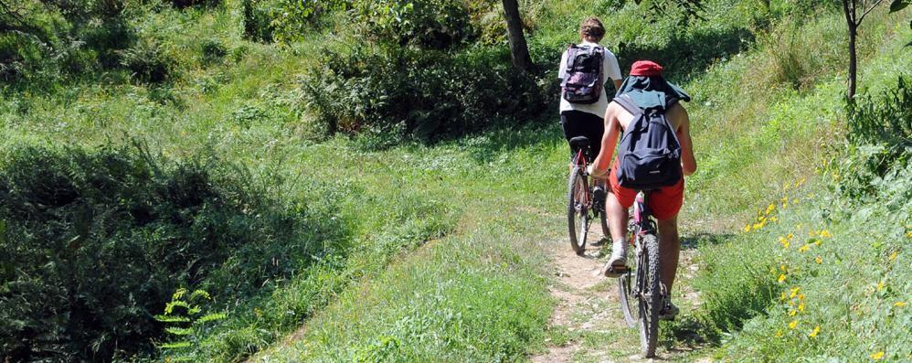 «Servono più bike hotel per il cicloturismo»