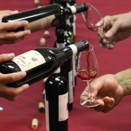 """Chiuro capitale del vino , luci sul """"Grappolo d'Oro"""""""