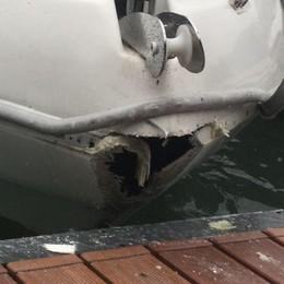 Lago in tempesta, danni alle barche per il forte vento