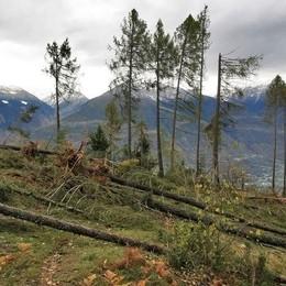 «Maltempo, in Valtellina la Regione è stata tempestiva»