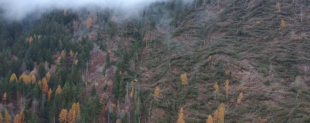 Mille ettari devastati dalla tromba d'aria
