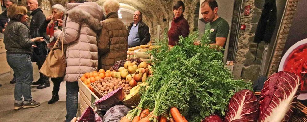 Sempre più giovane l'agricoltura  A Sondrio +14,3%