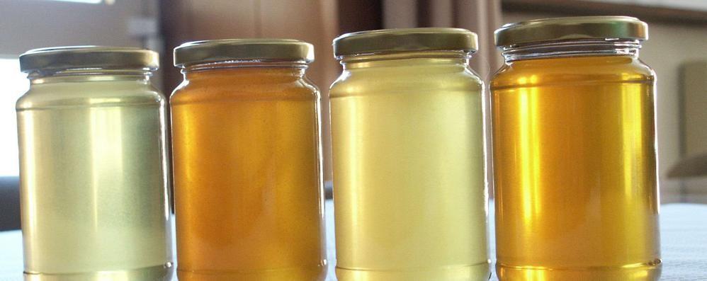 Cresce la domanda di miele  e aumentano le imprese