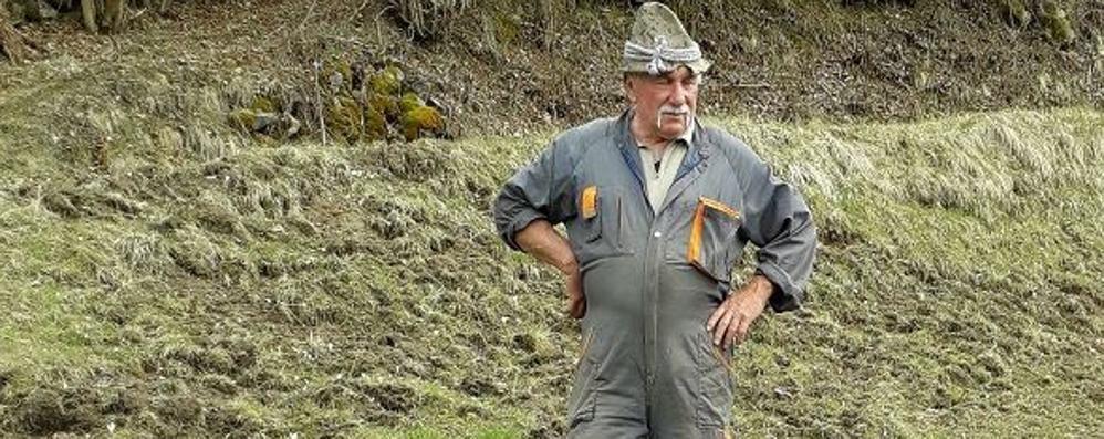 Danni da cinghiali, la Provincia invia  squadre di cacciatori