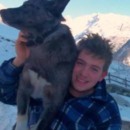 Due cani uccisi a Livigno. «Un gesto inspiegabile»