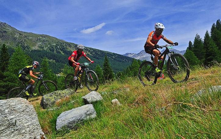 Biciclette per tutti i gusti  Torna il servizio di noleggio
