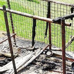 Due cani bruciati vivi   nel rogo del capanno  «Chi sa qualcosa parli»