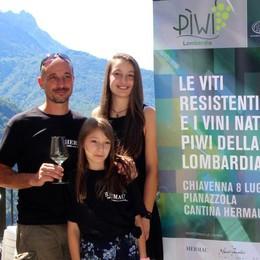 C'è un'altra cantina in Valchiavenna: con tante novità